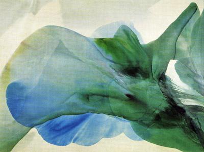 Phenomena Kwan Yin - Paul Jenkins